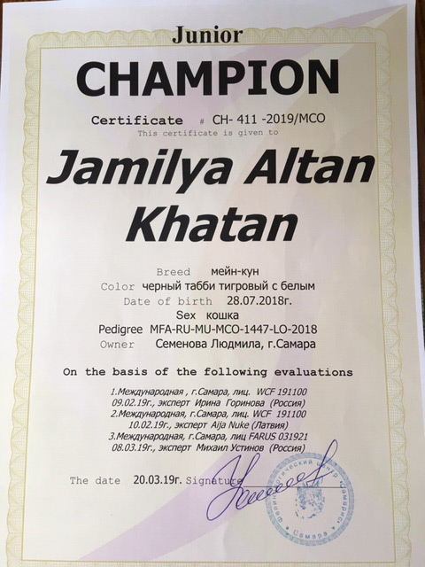 jamiliya junior champion